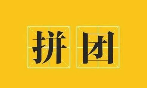 娃哈哈拼团项目来袭——领导人实力对接中(2)